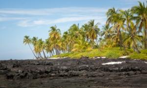 Big Island Hawai'i