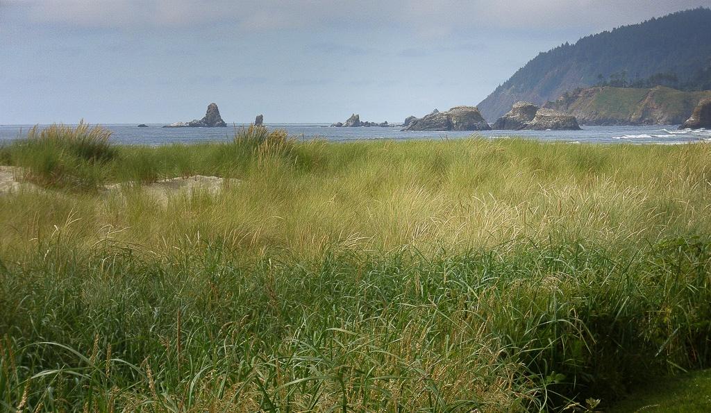 unberührte Strandabschnitte gibt es auch
