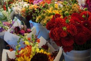 Dahlien, Sonnenblumen und Rosen
