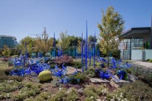 """blaue """"Blumen"""""""