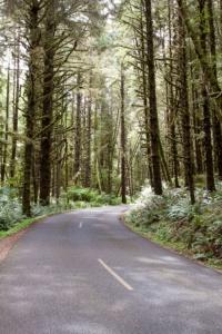 Straße zum Ecola State Park
