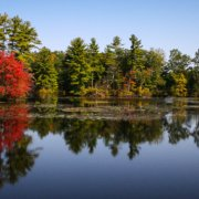Indian Summer in Sturbridge